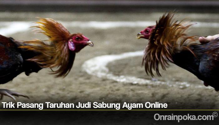 Trik Pasang Taruhan Judi Sabung Ayam Online